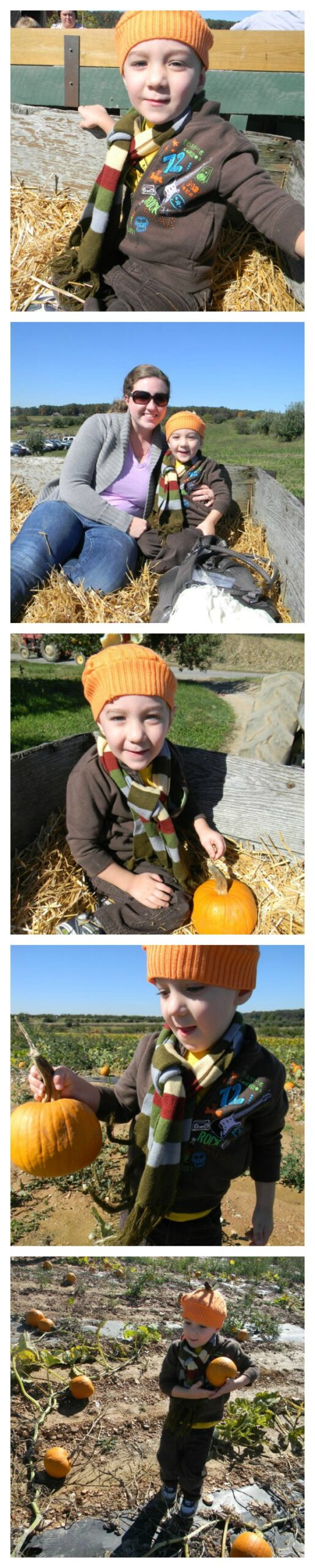 Pumpkin Sweater Hat How to turn an old sweater into an adorable fall hat for your toddler. This is a great beginner sewing project!