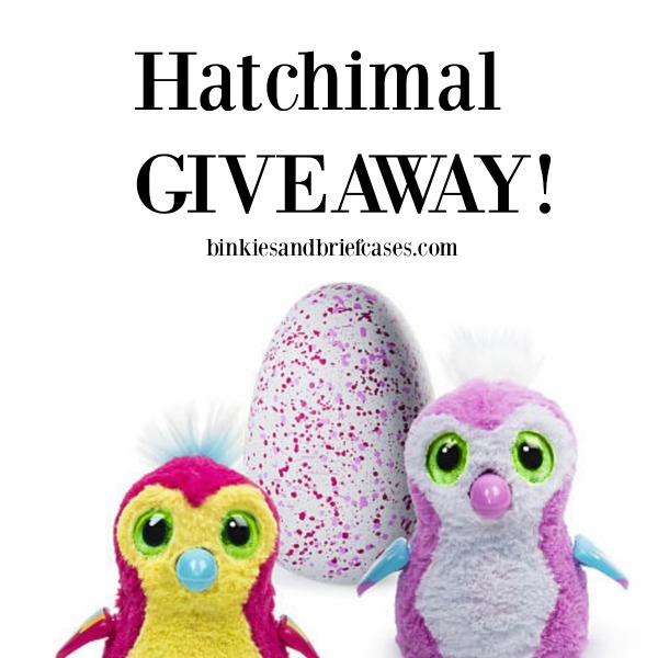 Hatchimal Giveaway